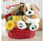 Wishing You a Speedy Recovery Gourmet Gift Basket