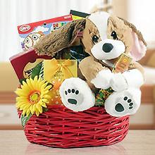 Get Better Soon, Kid! Activities and Gourmet Gift Basket