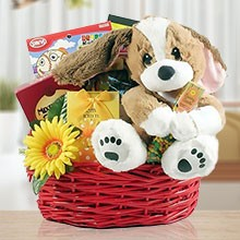 Wishing You a Speedy Recovery Gourmet Gift Basket