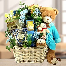 A Very Special Beary Gift Basket of Delights for Boys