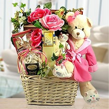 A Very Special Beary Gift Basket of Delights  for Girls