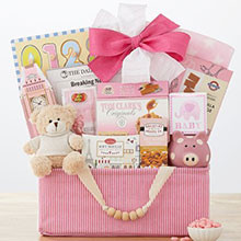 Celebrate New Life Gift Basket (Girl)